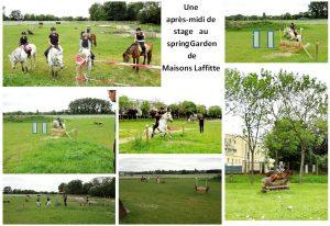 srint-garden-2013